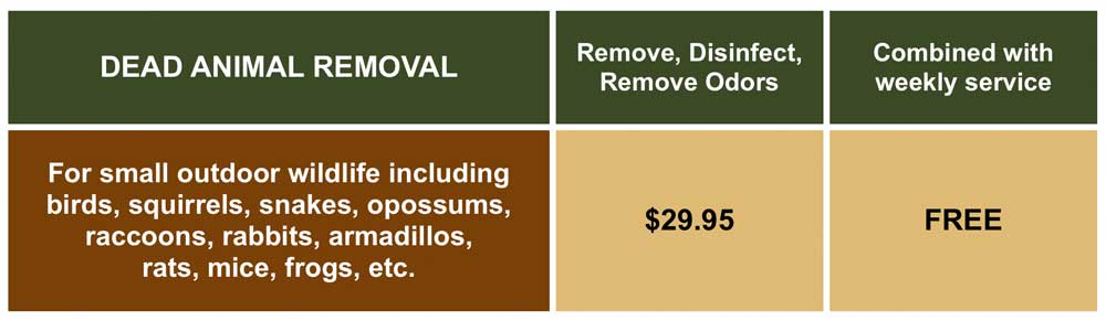 Dead animal removal prices
