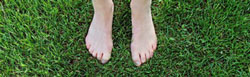 Bare feet in clean grass