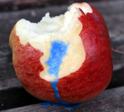 Image of a poison apple as an analogy for Apple Computers.