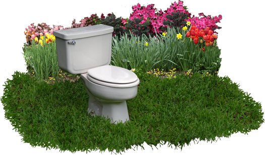 Image of toilet in a backyard